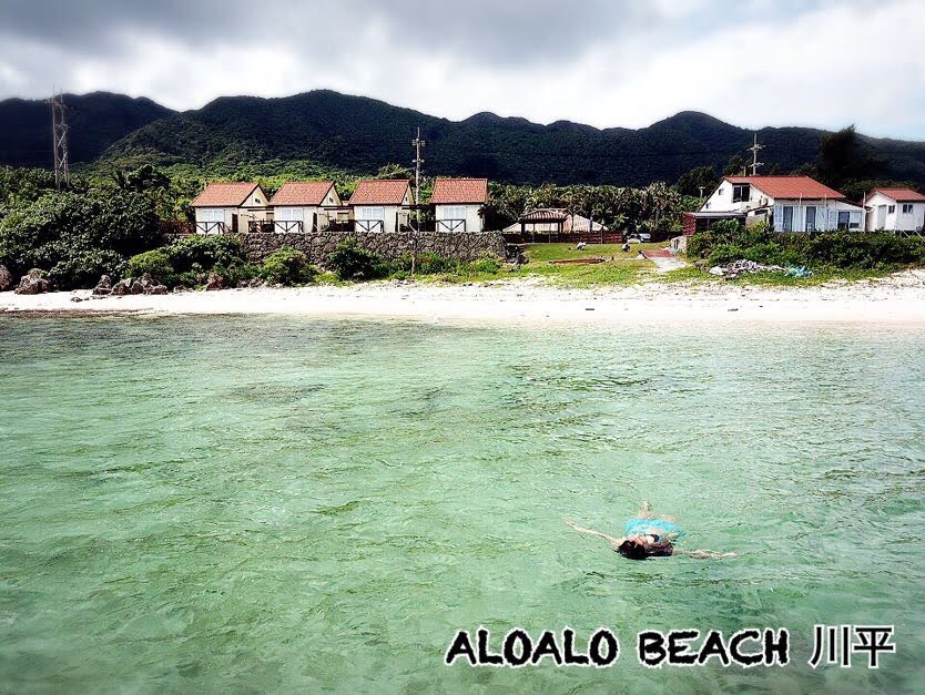 ALOALO海側からの空撮写真1